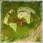 2013-arbre-monde